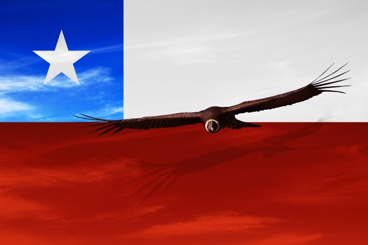 chile-south-america-independence-day-18-september-manipulated-image-of-national-bird-flying-over_t20_bAwe4P